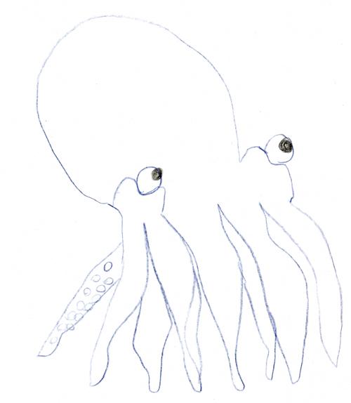 OctopusSmall.jpg