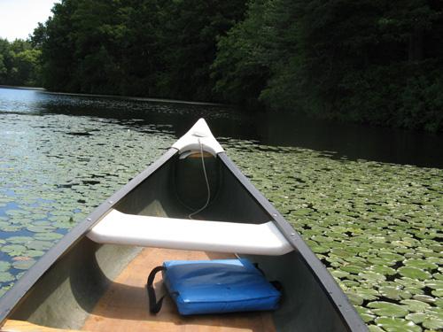 CanoeView1.jpg