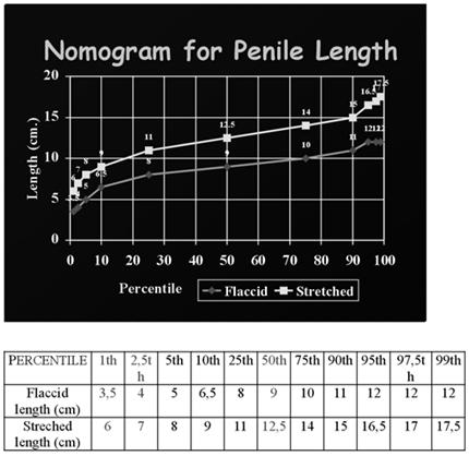 Viagra erection vs normal erection