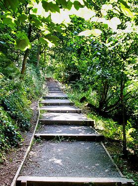 shallow steps.jpg