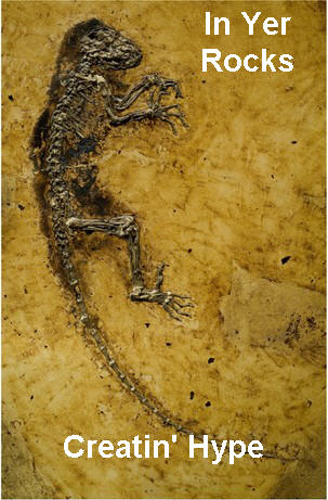 LOL Fossil.jpg