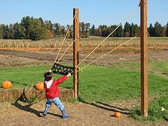 giant slingshot.jpg