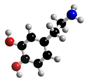 Dopamine.jpg