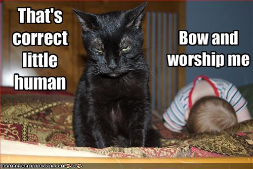 funny-pictures-cat-demands-that-baby-worship-him.jpg