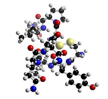 oxytocin mol.jpg