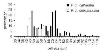 diatom sex2.png