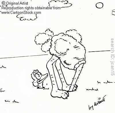 ostrich head in sand.jpg