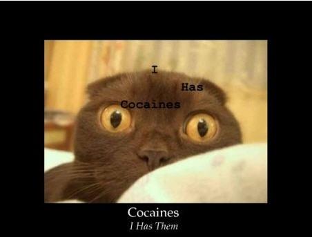 cocaines.jpg
