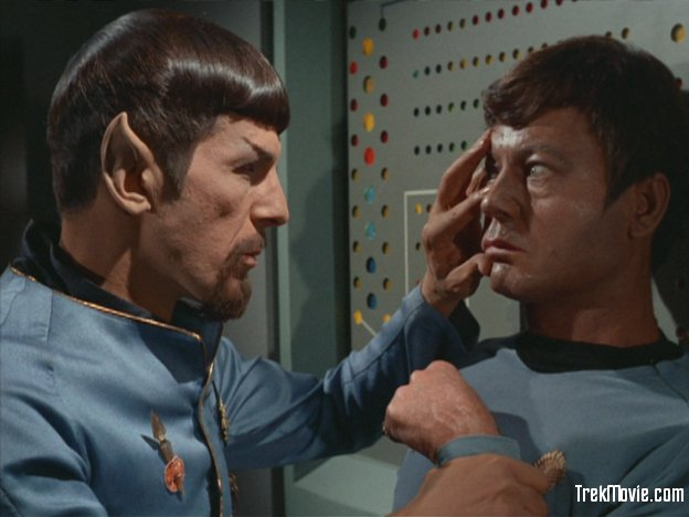 mind-meld-mirror_spock_mccoy.jpg